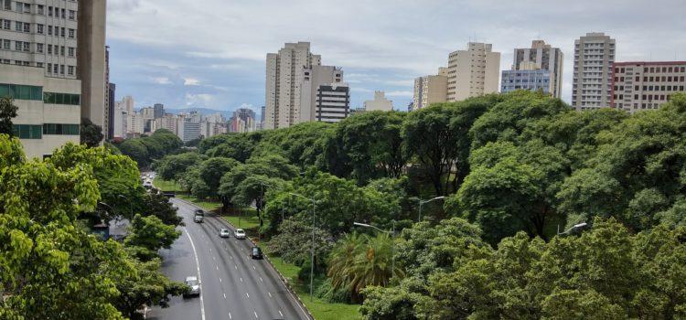 Sao Paulo skyline and greenery